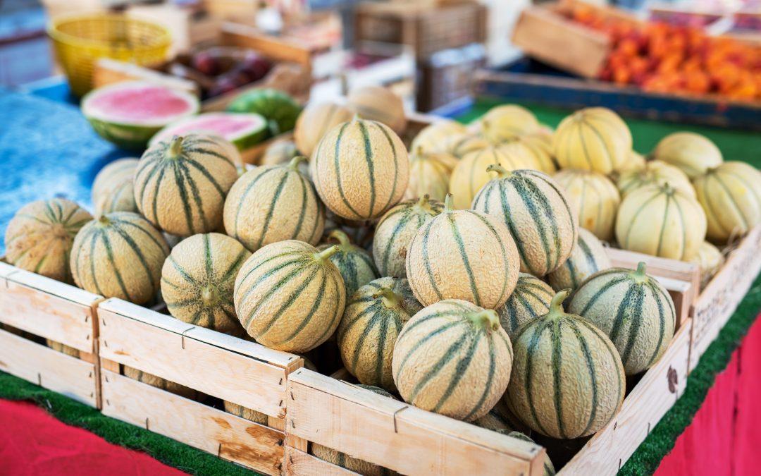 Septembre, le mois de prédilection des gourmands !